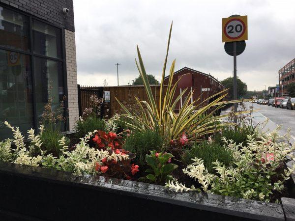 S4B LOOPER planters
